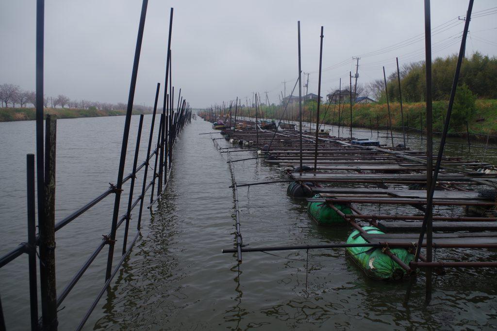 新利根川上流の真珠棚