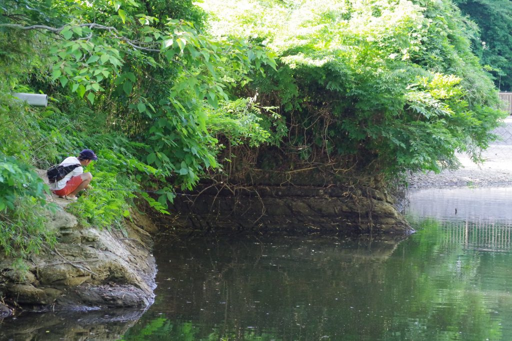 亀山ダムおかっぱり