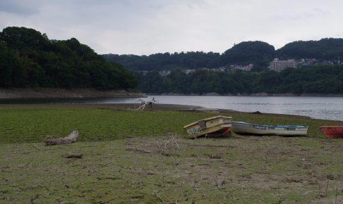 津久井湖湖畔大減水