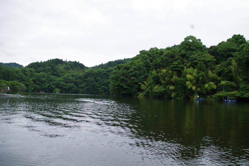 kameyamadam2017