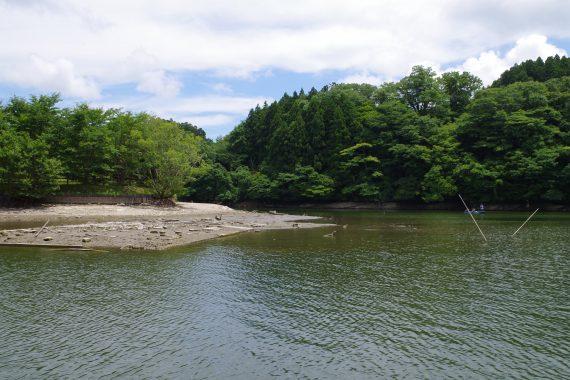 亀山ダム白鳥島