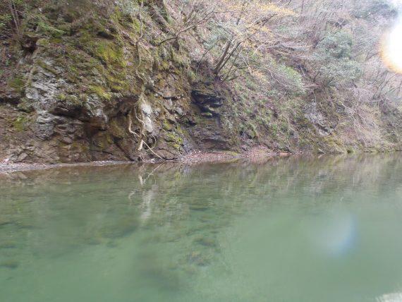 シャッドラップラパラ相模湖