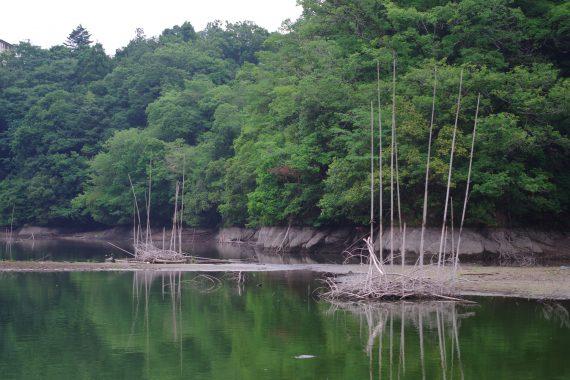 相模湖秋山川バス釣り