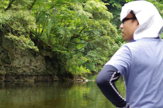 亀山ダムスズメバチの巣