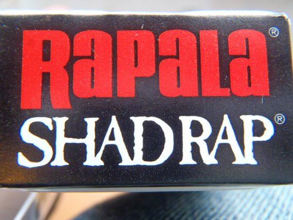 シャッドラップラパラ
