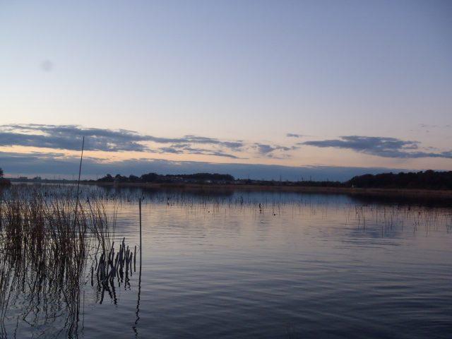 冬の牛久沼