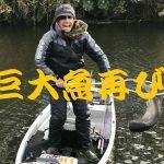 レンギョ巨大魚利根川
