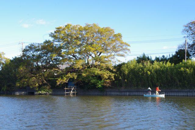 長門川バス釣り
