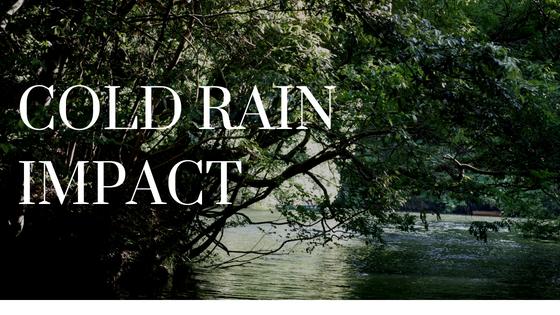 亀山ダム冷たい雨レジットデザインオーナーズミーティング