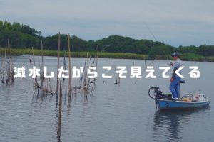 牛久沼バス釣り減水
