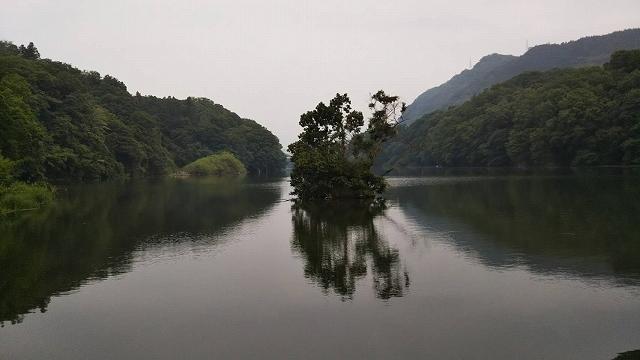 相模湖津久井湖
